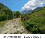 trekking in the alps | Shutterstock . vector #1132945373