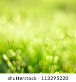 Green Grass Background With...