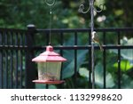 chickadee titmouse songbird... | Shutterstock . vector #1132998620