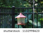 chickadee titmouse songbird... | Shutterstock . vector #1132998623