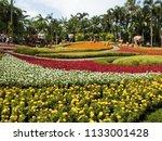 chonburi  thailand   june 17 ... | Shutterstock . vector #1133001428