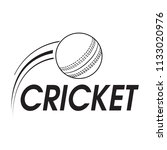 abstract cricket label   Shutterstock .eps vector #1133020976