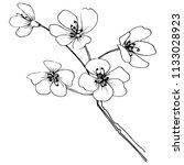 sakura in a vector style... | Shutterstock .eps vector #1133028923