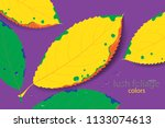 lush foliage vector leaf colors ... | Shutterstock .eps vector #1133074613