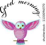 Funny Turquoise Pink Owl...