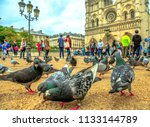 Small photo of Closeup of many pigeons eating on the ground in Notre Dame square. On background the famous Notre Dame de Paris Cathedral, Ile de la Cite, France and tourists visiting the capital.