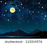 vector night starry sky with... | Shutterstock .eps vector #113314576