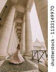 pretty young bride in wedding...   Shutterstock . vector #1133149970