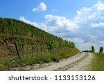 rural countryside road between... | Shutterstock . vector #1133153126