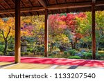 colorful leaves in autumn park  ... | Shutterstock . vector #1133207540