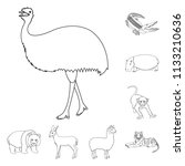 different animals outline icons ...   Shutterstock .eps vector #1133210636