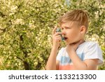little boy using inhaler near... | Shutterstock . vector #1133213300