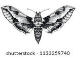 hand drawn butterfly tattoo.... | Shutterstock . vector #1133259740