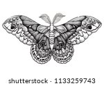 butterfly tattoo art.... | Shutterstock . vector #1133259743