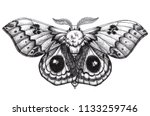 beautiful butterfly tattoo.... | Shutterstock . vector #1133259746