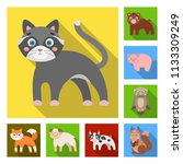 toy animals flat icons in set...   Shutterstock . vector #1133309249