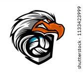 eagle head volleyball team logo   Shutterstock .eps vector #1133423999