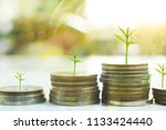 coin with tree in mutual funds  ... | Shutterstock . vector #1133424440