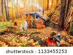 Autumn forest hunting hut...