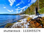 spring forest river shore snow... | Shutterstock . vector #1133455274