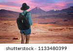 female traveler looking at... | Shutterstock . vector #1133480399