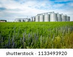 agricultural silo  foregro... | Shutterstock . vector #1133493920