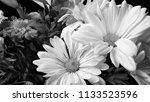 bouquet of summer flowers  ... | Shutterstock . vector #1133523596