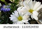 bouquet of summer flowers  ... | Shutterstock . vector #1133524550
