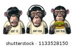 three wise monkeys in... | Shutterstock .eps vector #1133528150