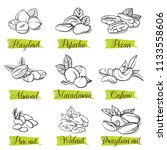 hand drawn sketch style nuts... | Shutterstock .eps vector #1133558606