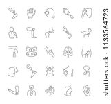 collection of line gray icons... | Shutterstock .eps vector #1133564723