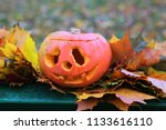 jack o' lantern and foliage on ... | Shutterstock . vector #1133616110
