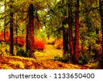 trees in a dense forest | Shutterstock . vector #1133650400