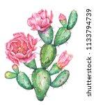 Watercolor Cactus. Raster...