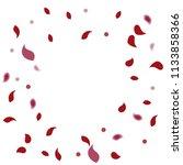 abstract flower petals confetti ...   Shutterstock .eps vector #1133858366