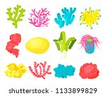 seaweed  corals and anemone set.... | Shutterstock .eps vector #1133899829