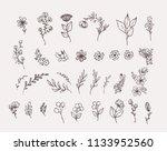 big set of floral design... | Shutterstock .eps vector #1133952560