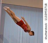 orenburg  russia   december 3 ... | Shutterstock . vector #1133953718