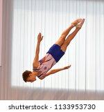 orenburg  russia   december 3 ... | Shutterstock . vector #1133953730