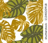 seamless hand drawn botanical... | Shutterstock .eps vector #1134020918