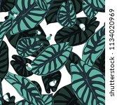 seamless tropical pattern.... | Shutterstock .eps vector #1134020969