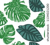 seamless hand drawn botanical... | Shutterstock .eps vector #1134021200