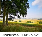 view of english countryside... | Shutterstock . vector #1134022769