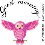 Funny Magenta Pink Owl Sitting...