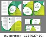 set of color brochure template... | Shutterstock .eps vector #1134027410