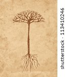Sketch Tree With Roots On Old...