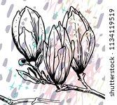 tropical  stripe  animal motif. ... | Shutterstock .eps vector #1134119519
