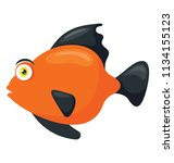 a freshwater fish with broad... | Shutterstock .eps vector #1134155123