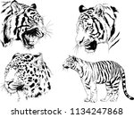 set of vector drawings on the... | Shutterstock .eps vector #1134247868