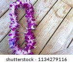 hawaiian purple orchid ...   Shutterstock . vector #1134279116